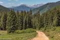 Sawatch Range, Colorado, Red Cliff, Shrine Pass