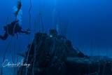 Diver, Grumman F6F Hellcat, USS Saratoga, Bikini Atoll, Marshall Islands