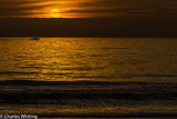 Sunset, Silhouette, boat, Siesta Key, Sarasota, Florida