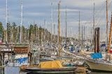 Bainbridge Island, Seattle, Washington, sailboats, masts, marina