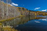 Mountain Village, Colorado, Reflections