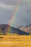 Rainbow, Wilson Mesa, Colorado, evening