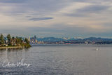 Seattle, Washington, Bainbridge Island, skyline, harbor