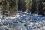 Stream, Snow Fields, Pine Trees, Steamboat Springs, Colorado, Sunlight