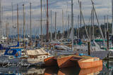 Bainbridge Island, Seattle, Washington, sailboats, masts, marina