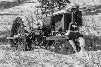 Workhorse, Tractor, Evergreen, Colorado