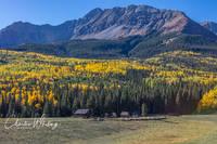 Wilson Peak, Placerville, Colorado, Homestead