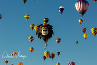 Albuquerque Balloon Fiesta, Albuquerque, New Mexico