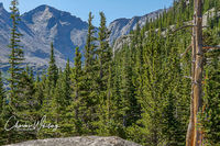 Pagoda Mountain, Rocky Mountain National Park, Mills Lake Trail, Glacier Gorge, Colorado