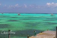 Reef Divers, Little Cayman, Tropical Storm Issac, Newton Dive Boats