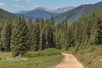 Sawatch Range, Colorado, Red Cliff, Shrine Pass, Summit County, Eagle County