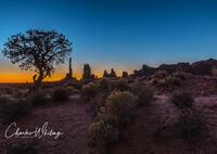 Sunrise Silhouette at the Totem Pole