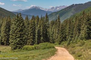 Country Roads (Shrine Pass)