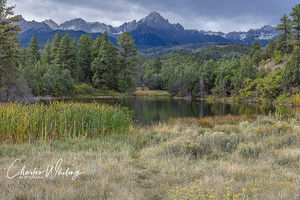 Cattails, Pond, and Mount Sneffels