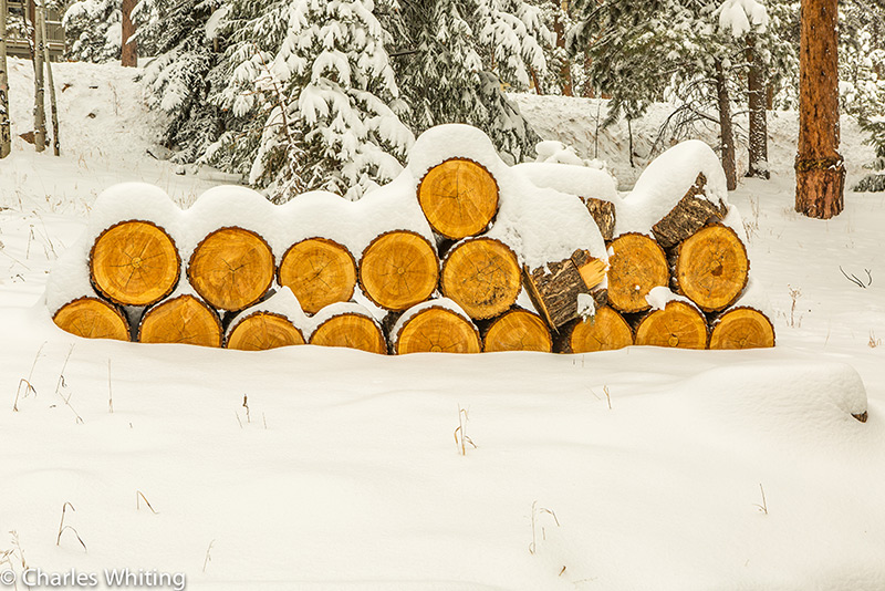 Spring, Storm, Hillside Haven, Evergreen, Colorado, Rockies, photo