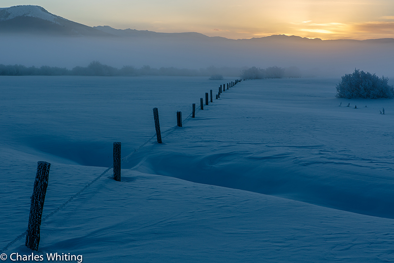 Fenceline, barbed wire, frost, sunrise, Steamboat Springs, Colorado, photo