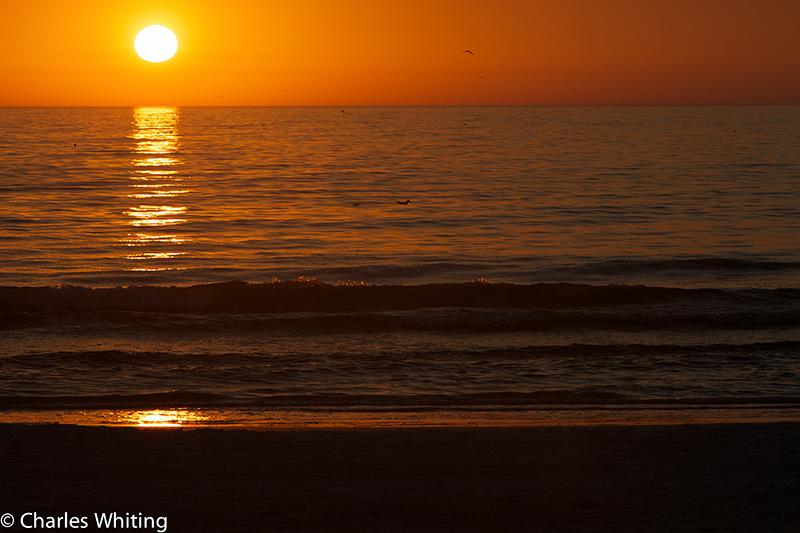 Sunset, Siesta Key, Sarasota, Florida, Sea, photo
