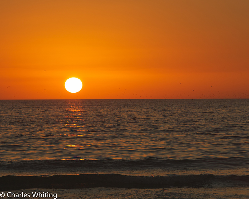 Sunset, Gulf of Mexico, Siesta Key Beach, Sarasota, Florida, photo