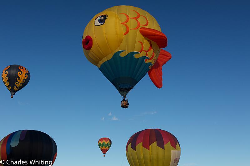 Albuquerque Balloon Fiesta, October 2012