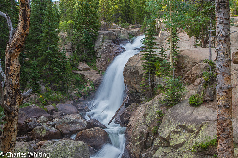 Alberta Falls, RNMP, Rocky Mountain National Park, Colorado, photo