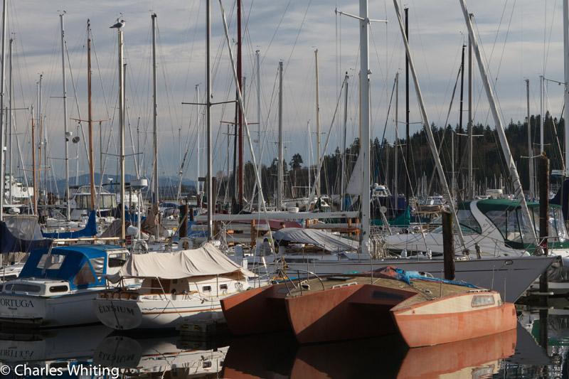 Bainbridge Island, Seattle, Washington, sailboats, masts, marina, photo