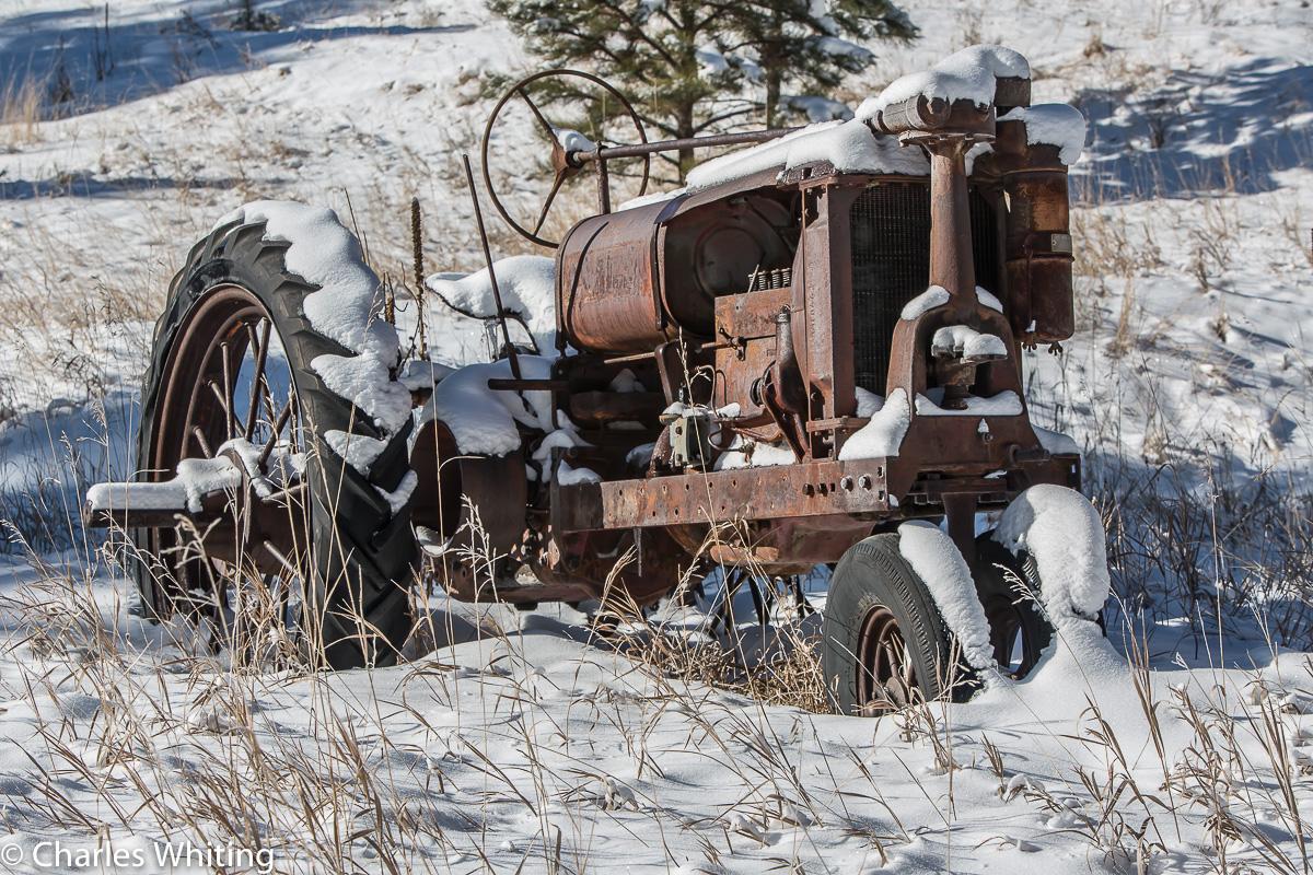Workhorse, Tractor, Evergreen, Colorado, photo