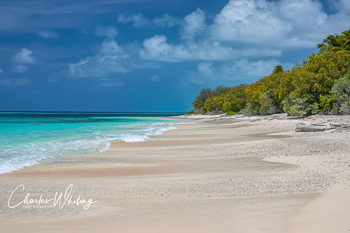 Bikini Atoll, Bikini Atoll Beach, white sand, shells, azure water, photo
