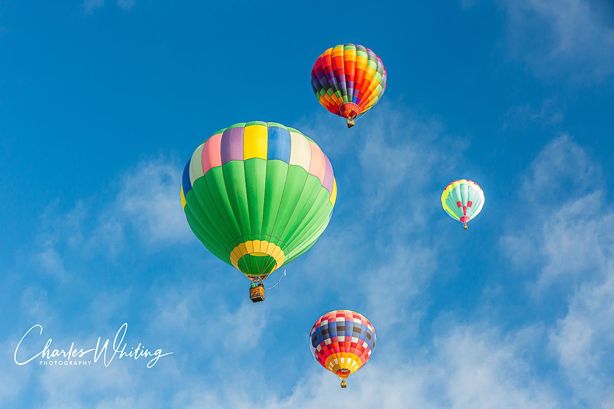 2014 Albuquerque International Balloon Fiesta