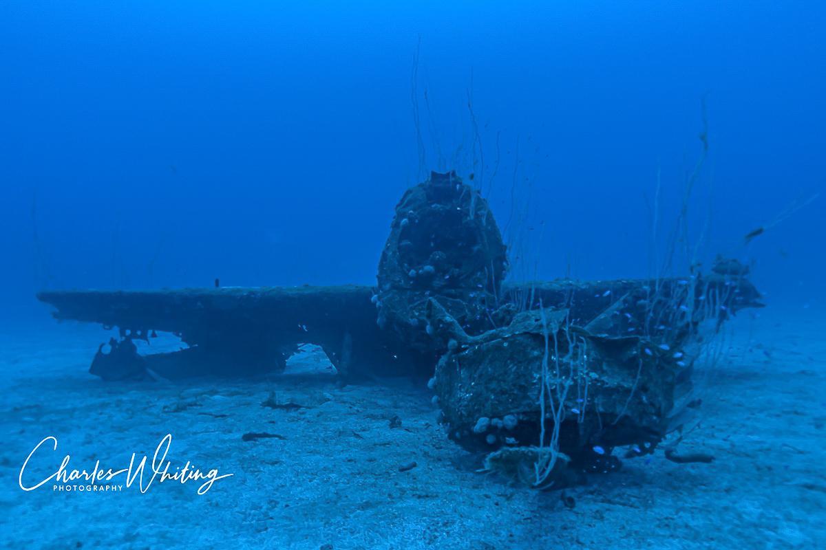 Grumman F6F Hellcat, USS Saratoga, Bikini Atoll, Marshall Islands, photo