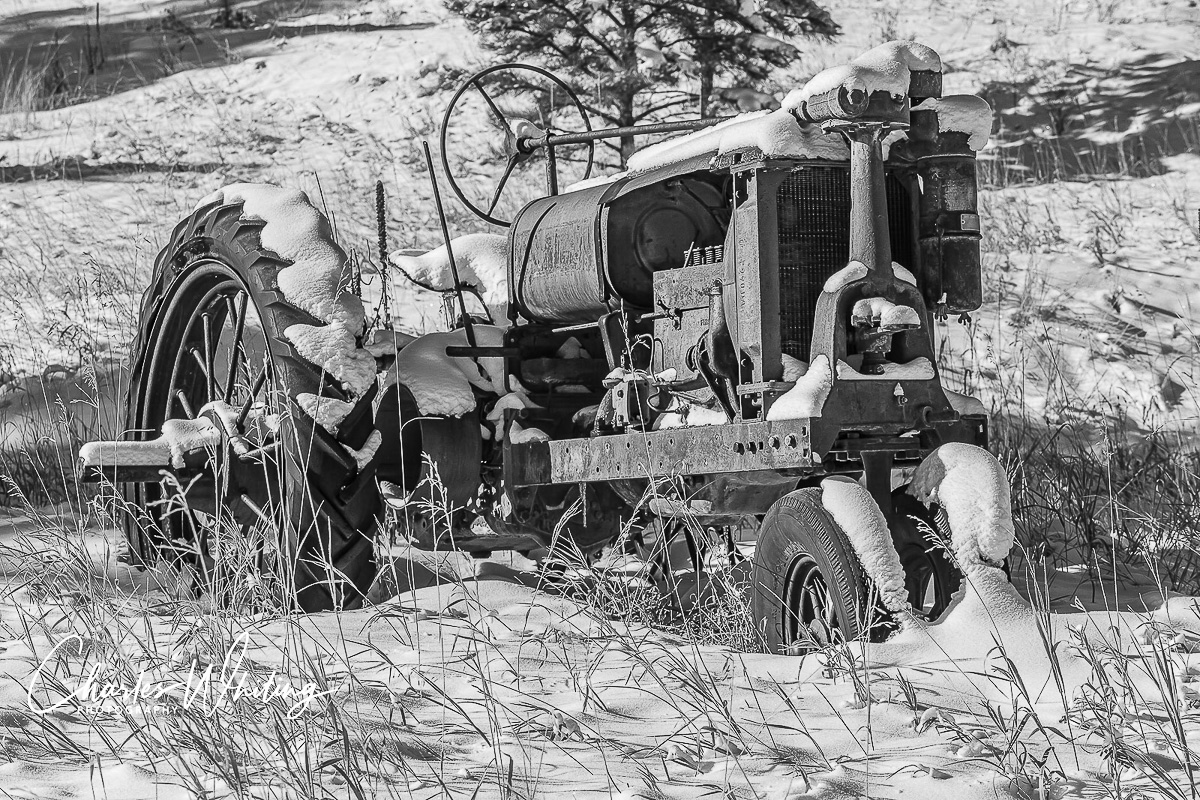 Workhorse, Tractor, Evergreen, Colorado, photo