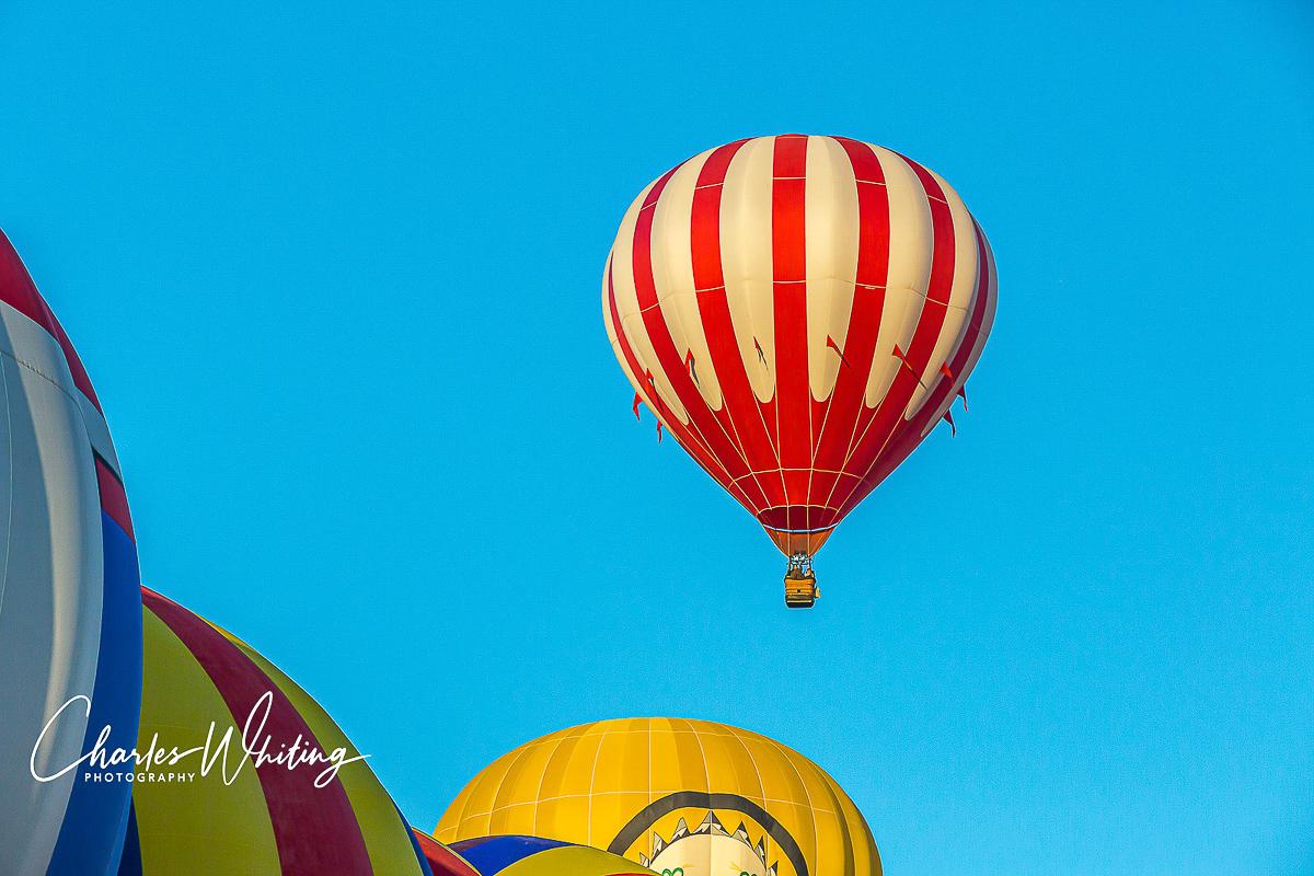 2013 Albuquerque International Balloon Fiesta