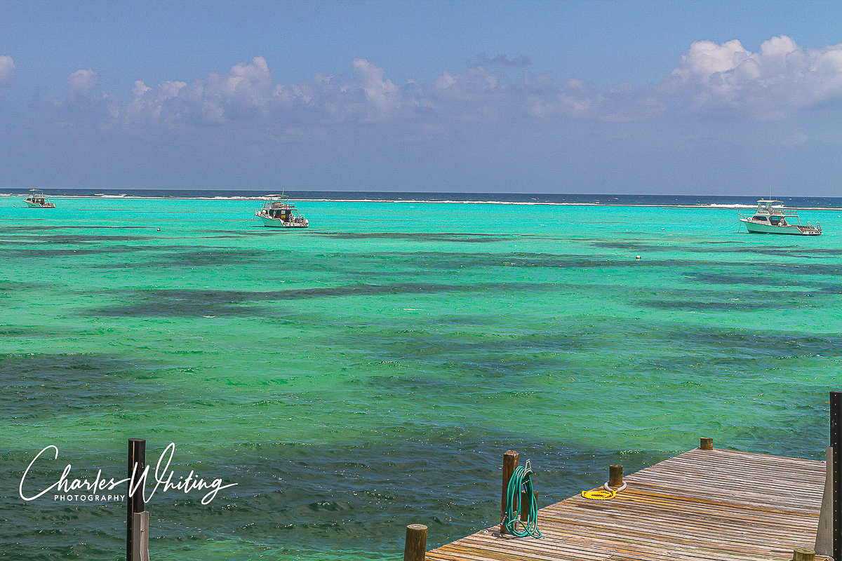 Three of the Reef Divers Dive Boats, 46' Newtons, the finest day trip dive boats available. These boats handled the 8 to 10 foot...